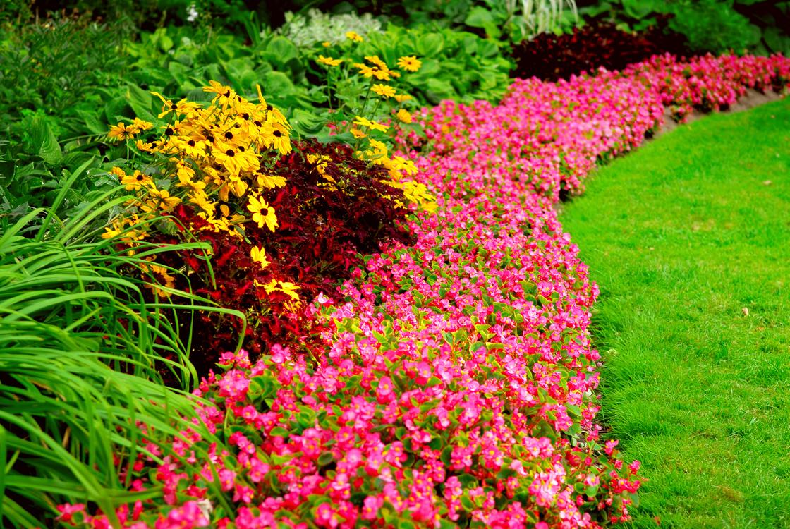 Lawn Garden Services : Lawn service gt premier maintenance solutions